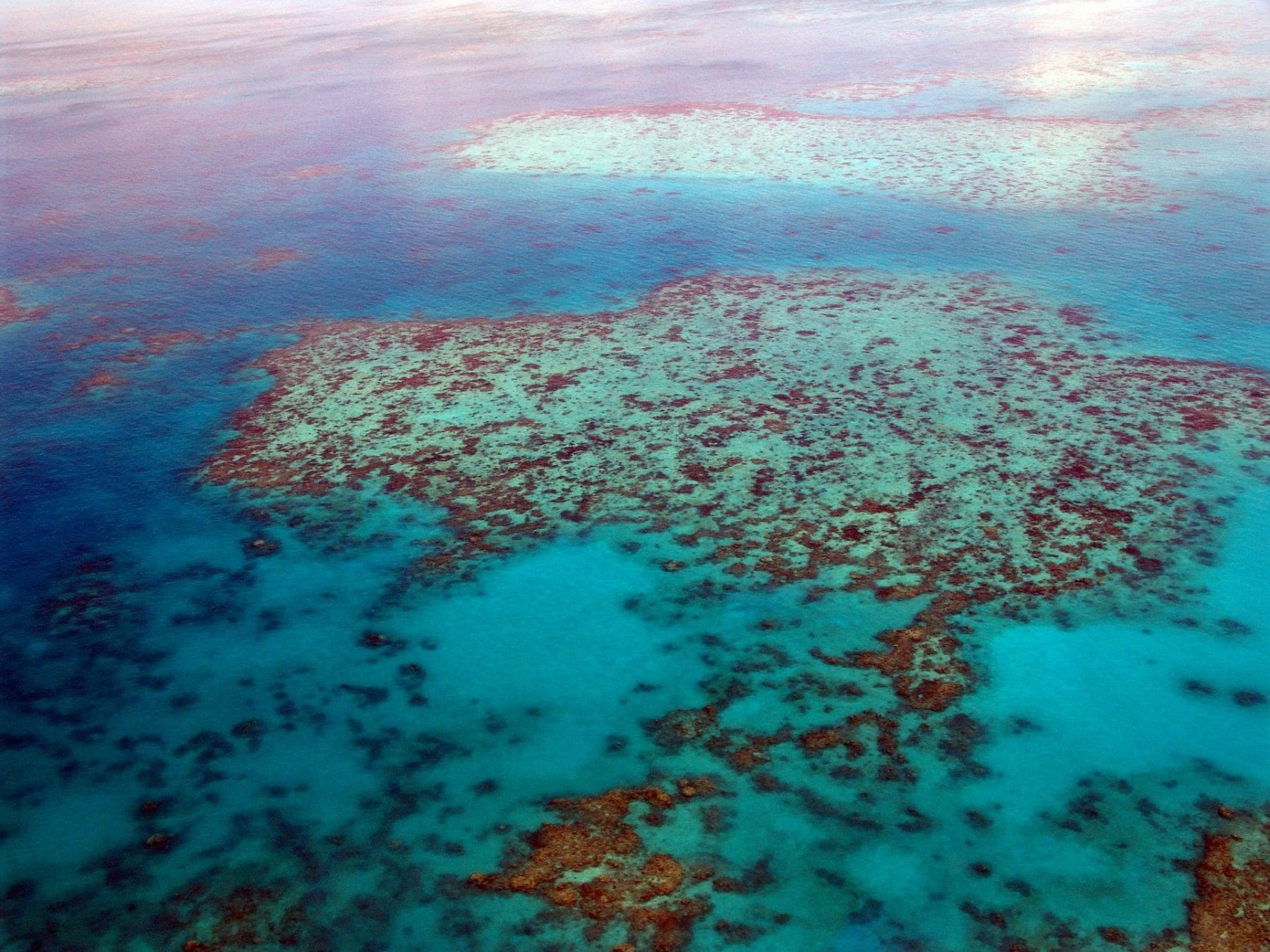 How much do you know about the Great Barrier Reef?